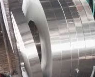 Duplex Steel 2205 Strip